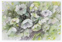 淡彩 花のスケッチ展 画像1